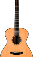 Breedlove guitar small