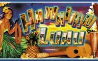 HawaiianLuau