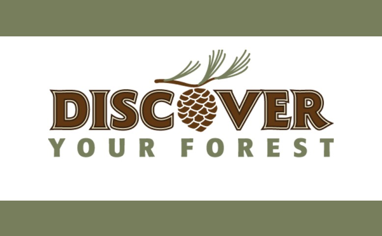 discover-use