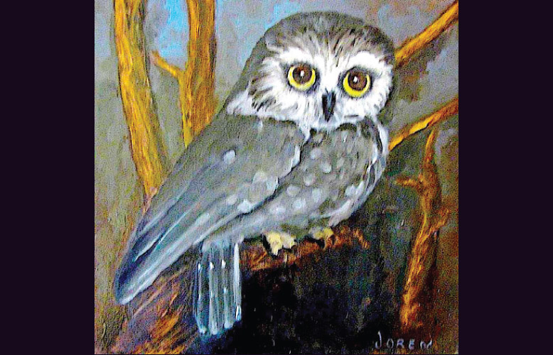 Eyes in the night by Joren Traveller