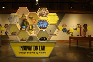Exhibition Closing: Innovation Lab: Design Inspired by Nature @ High Desert Museum | Bend | Oregon | United States
