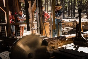 Lazinka Sawmill Demonstration @ High Desert Museum | Bend | Oregon | United States