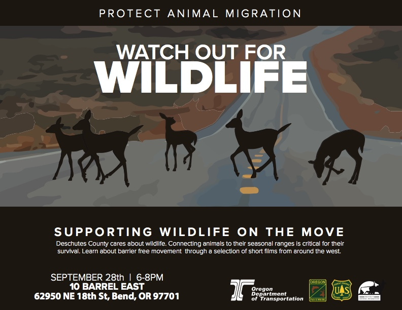 Watch Out for Wildlife Film Festival @ 10 Barrel  Brewing Company | Bend | Oregon | United States