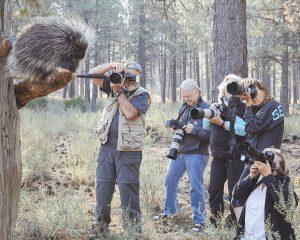 Conservation Photography @ High Desert Museum