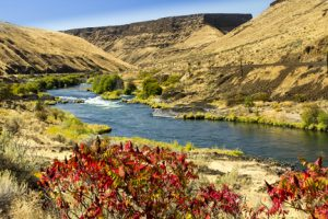 Natural History Pub: Go With the Flow @ High Desert Museum