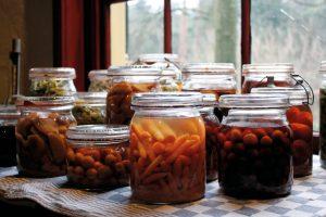 Weekend Workshop: Fermented Foods @ High Desert Museum