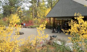 Virtual Tips and Strategies for Effective Charitable Giving @ High Desert Museum